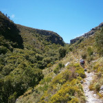 The trail up Disa Gorge, Table Mountain